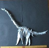 ブラキオサウルス骨格