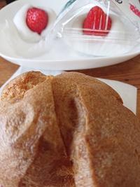 【宮澤養鶏園】さんの玉子使用のシュークリーム買いに【松華堂】