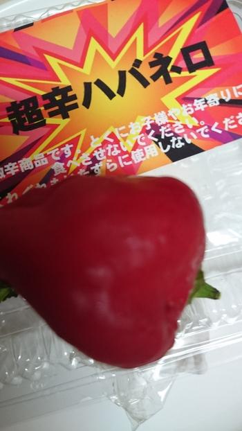 大橋園芸さんのハバネロエキス鍋