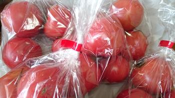 大九州物産展‥(大橋さん)トマトに負ける