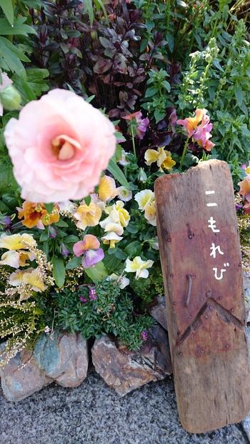 こもれびマルシェ【花遊庭】