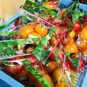 トマト好き⭐ヤマナカ豊田フランテ館