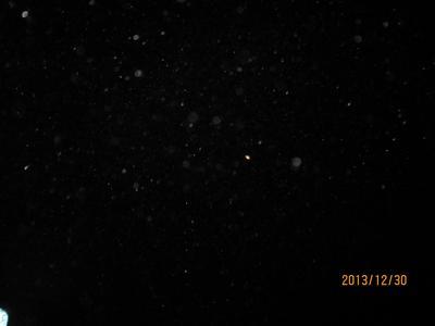 見えるかな~無数の星が!