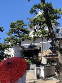 岡崎城と青い空と結婚式の新郎新婦