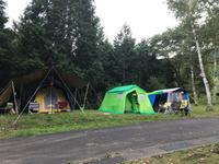 せいなの森キャンプ場