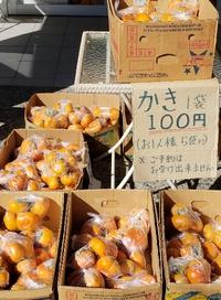 旬の果物「次郎柿」