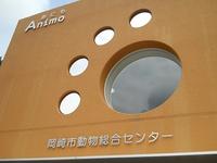 「Animo」