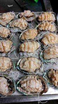 美味しい魚料理、豊田市で食べるなら☆和食でヘルシー宴会いかがですか? 2015/12/07 19:25:59