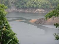 矢作ダム貯水率