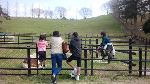 鞍が池でのどかな時間… 桜はまだお預けです