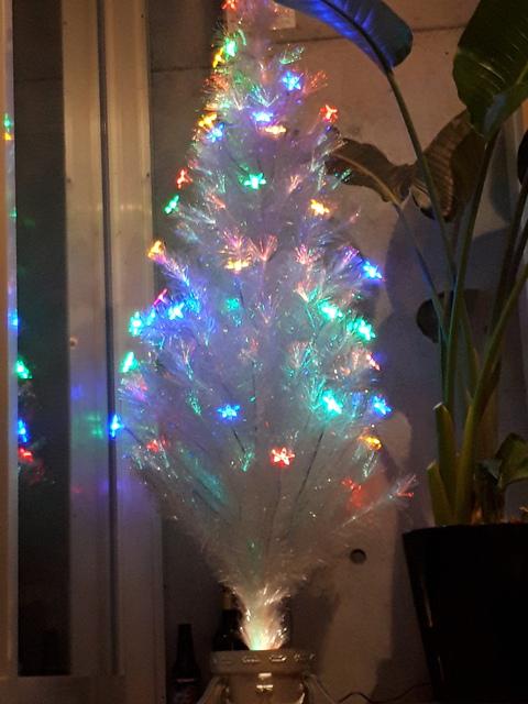 チャコールもクリスマスモードになりつつあります