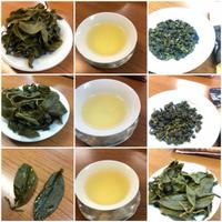 台湾茶の勉強会