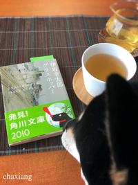 茉莉花茶 2018/08/01 11:18:41