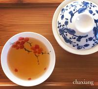 【募集開始】中国茶講座〜はじめて中国茶〜二期生