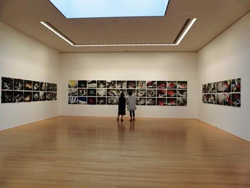 アラーキー写真展へ 豊田市美術館