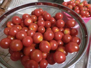 自家製トマトソース作り(冷凍用)とトマト牛丼