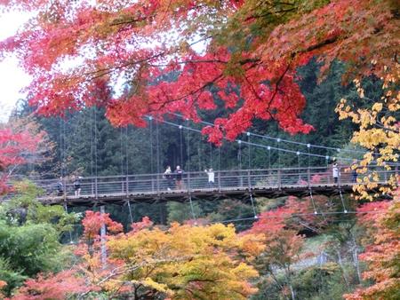 大井平公園紅葉まつり2016