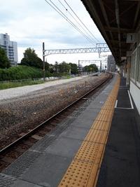愛環×ラグビーワールドカップ豊田