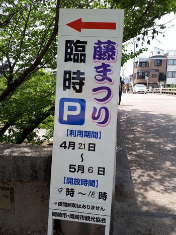 2018年岡崎公園五万石藤まつり開花状況(4月23日)