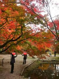 曽木公園もみじまつり2016