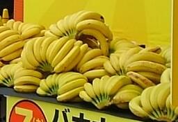 大試食会&バナナの叩き売り