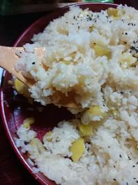 栗ご飯と美味しい浅漬けの素レシピ