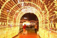 TOYOTA CITY 11月イベントの記憶