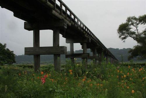 野花が咲く蓬莱橋