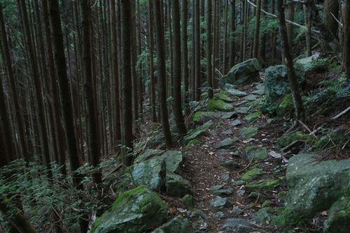 熊野古道通り峠