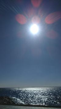 蒲郡竹島のロングランは風強し