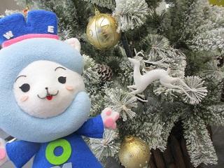 クリスマスツリーを飾りました♪