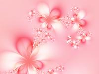 12月3日 色・彩 選びの美身!美心!美人!講座