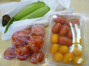 夢農人の夏野菜