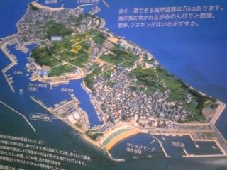 日間賀島島のり