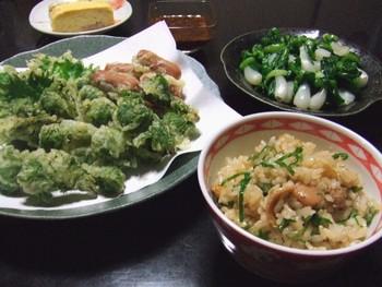 こごみの天ぷら