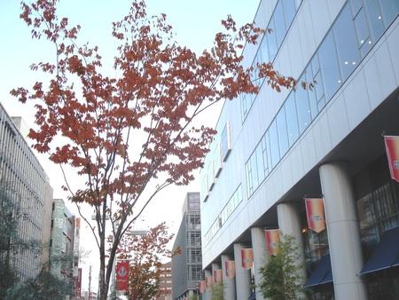 豊田市駅前も紅葉