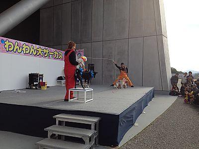 軽大会in豊田スタジアムに行ってきました❤わんわん大サーカス