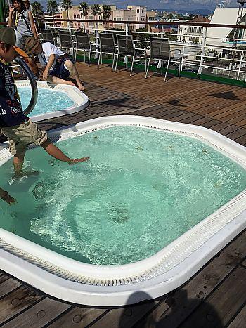 オーシャンドリーム号船内見学会に行ってきました