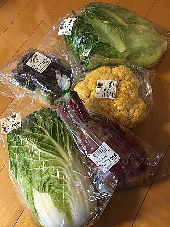 ころも農園で新鮮野菜をゲット(豊田市)