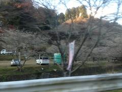 車窓から・・・