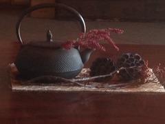 喫茶『苔』さん