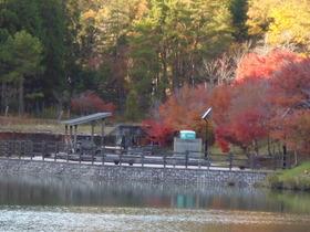 今年も行ってみました 大沢池
