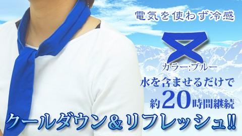 冷却スカーフ2枚で700円!カウポン