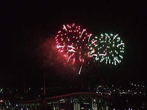 豊田スタジアム 冬の花火