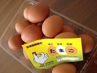 初★卵販売機  宮澤養鶏園