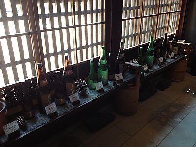 越前松島水族館→黒龍酒造→羽二重餅の古里→彦根城