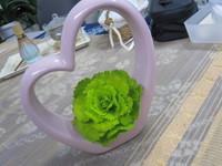 生花から作るプリザ・葉牡丹