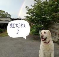 虹の橋の話