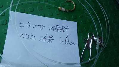 10/14鮮魚部仕入れ