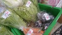 クマ農園さんの野菜入荷